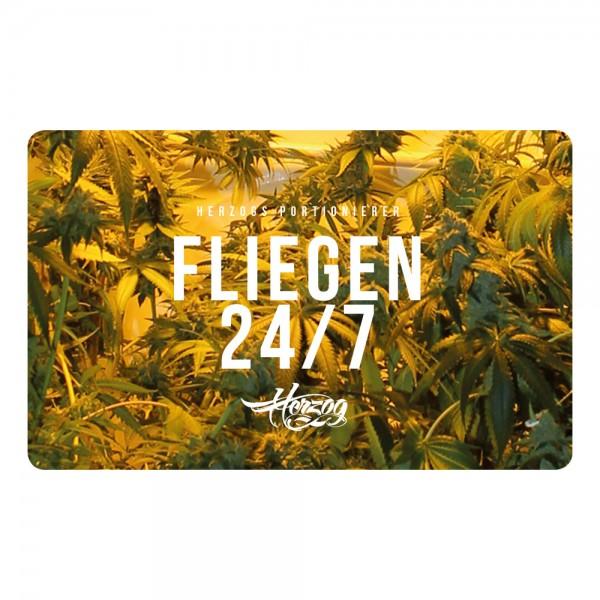 Fliegen 24/7 [Zuppelkarte]